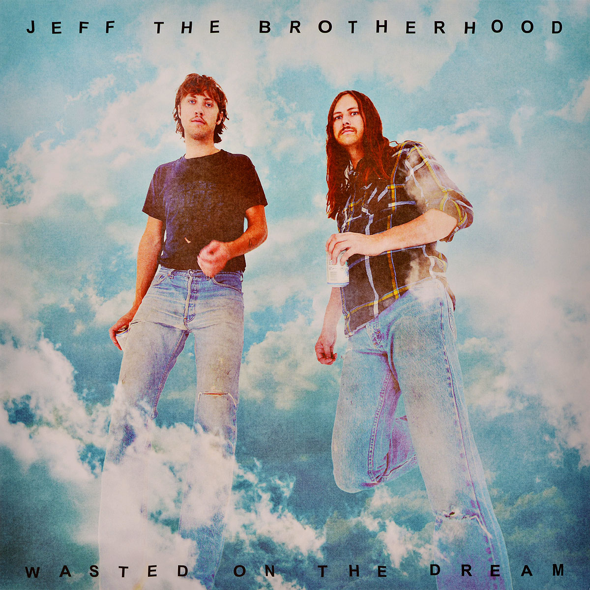 Jeff The Brotherhood Jeff The Brotherhood. Wasted On The Dream (LP) jeff lemire the new 52 future s end vol 1
