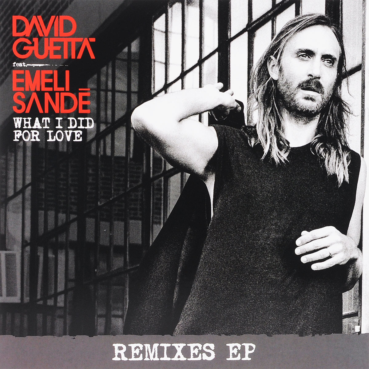 David Guetta Feat. Emeli Sande. What I Did For Love (LP)