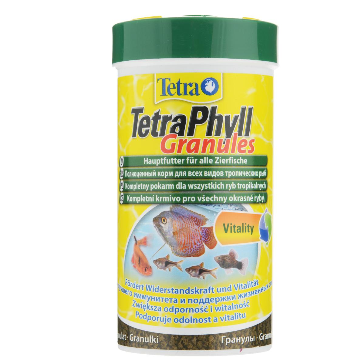 Корм сухой TetraPhyll Granules для всех видов аквариумных тропических рыб, в виде гранул, 250 мл139893Корм TetraPhyll Granules - это биологически сбалансированное питание для здоровых и ярких рыб. Превосходная смесь со специальным комплексом растительных ингредиентов обеспечивает полноценное питание рыб и подходит для ежедневного кормления. Особенности TetraPhyll Granules:высокое содержание растительных компонентов способствует улучшению здоровья и поддержанию жизненных сил любых видов тропических рыб,жизненно-необходимые волокна стимулируют пищеварение, что особенно необходимо травоядным рыбам. Рекомендации по кормлению: кормите несколько раз в день маленькими порциями. Характеристики: Состав: рыба и побочные рыбные продукты, экстракты растительного белка, зерновые культуры, растительные продукты, дрожжи, моллюски и раки, масла и жиры, водоросли, минеральные вещества.Пищевая ценность: сырой белок - 39%, сырые масла и жиры - 9%, сырая клетчатка - 7%, влага - 8%.Добавки: витамины, провитамины и химические вещества с аналогичным воздействием: витамин А 29070 МЕ/кг, витамин Д3 1820 МЕ/кг. Комбинации элементов: Е5 Марганец 64 мг/кг, Е6 Цинк 38 мг/кг, Е1 Железо 25 мг/кг. Красители, консерванты, антиоксиданты. Вес: 250 мл (90 г).