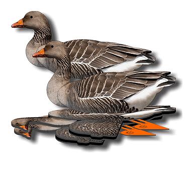 Комплект чучел серого гуся NRA-FUD, складные, полноразмерные, 6 штGS-12Полноразмерные трехмерные чучела с фотореалистичным оформлением, выполненным в правильных тонах.Эти чучела обладают преимуществами профилей, флюгеров и надувных чучел. Их специальное покрытие отражает ультрафиолет, невидимый человеческому глазу, но видимый птицам, благодаря чему эти чучела имеют дополнительное преимущество перед старомодными аналогами.Чучела NRA-FUD могут принимать неограниченное количество разных поз и использоваться на земле и на воде. Их можно вколачивать в мерзлый грунт или вбивать в пни - прочная трехмиллиметровая подставка выдерживает любые нагрузки. Брошенное в воду чучело само принимает правильное положение, благодаря продуманной балансировке.Чучело выдерживает выстрел - дробь просто проходит сквозь материал, не разрушая структуру.Это самые компактные и легкие чучела. Они просты в транспортировке и занимают минимум места.Быстрая установка. Эти чучела экономят ваше время - чтобы разложить один комплект, вам понадобится всего 2 минуты.