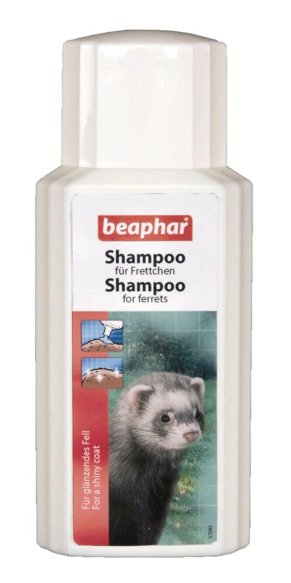 Шампунь для хорьков Beaphar, 200 мл0120710Шампунь Beaphar специально разработан для очищения и ликвидации натурального стойкого запаха характерного для хорьков. Мягкий шампунь можно использовать так часто, как необходимо (особенно в летние месяцы). Шампунь не смывает натуральный кожный жир, который защищает кожу, и делает шерсть блестящей и красивой. Шампунь подходит для подготовки зверька к выставкам. Способ применения: намочите шерсть теплой водой и вмасируйте шампунь до появления густой пены. Оставьте на 2-3 минуты, после тщательно смойте водой. Повторите, если необходимо и хорошо высушите. Избегайте попадания в глаза и уши. Объем: 200 мл. Товар сертифицирован.