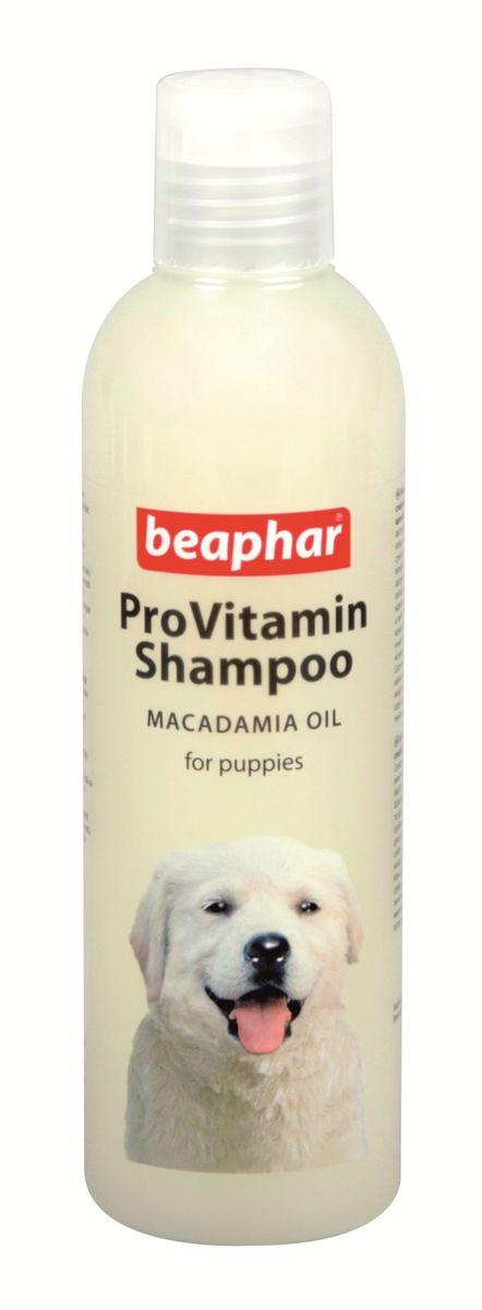 Шампунь для щенков Beaphar Pro Vitamin, 250 мл0120710Мягкий шампунь Beaphar Pro Vitamin специально разработан для чувствительной кожи щенков. Состав шампуня обогащен маслом австралийского ореха, которое частично впитывается в кожу и создает защитный барьер, предохраняющий ее от сухости и шелушения. Шампунь благоприятно воздействует на шерсть, делает ее мягкой, блестящей и здоровой. Шампунь нейтрален к РН кожи животных, поэтому он идеально подходит для ухода за кожей и шерстью щенка, а также подходит для мытья собак с чувствительной кожей. Имеет приятный запах шиповника и жожоба. Состав: вода, лаурет сульфат натрия, кокамид DEA, гидрогенизированное касторовое масло PEG-40, кокамидопропилбетаин, кокополиамин PEG-15, гидрофосфат натрия, масло макадамии, хлорид натрия, глицерин, гликоль дистеарат, ароматизатор, диэтаноламин, кокамид MEA, дигидрофосфат калия, 1,2-пропандиол, ортофосфорная кислота, лаурет-10, 5-бром-5-нитро-1, 3 диоксан. Объем: 250 мл. Товар сертифицирован.