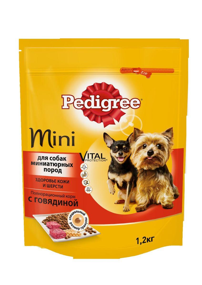 Корм сухой Pedigree для взрослых собак миниатюрных пород, с говядиной, 1,2 кг40157Сухой корм Pedigree для собак миниатюрных пород - это полнорационный корм с курицей, который создан с учетом потребностей. Он состоит из качественных и натуральных ингредиентов: мяса, овощей, злаков. Он создан с учетом особенностей пищеварения самых маленьких, легко усваивается и обеспечивает правильную работу их желудочно-кишечного тракта. Состав: куриная мука, пшеничная мука, кукуруза, рис, мясная мука (в том числе говядина минимум 4%), жир животный, пшеница, свекольный жом, подсолнечное масло, минералы, витамины, метионин. Пищевая ценность (100 г): белки 22 г., жиры 15 г., зола 8 г., клетчатка 4 г., влажность не более 10 г., кальций 1,3 г., фосфор 0,8 г., натрий 0,3 г., калий 0,58 г., магний 0,1 г., цинк 20 г., медь 1,5 г., витамин А 1500 МЕ, витамин Е 20 мг., витамин D3 120 МЕ, витамин В1, В2, В4, В5, В12., ниацин, омега-6, омега-3, полиненасыщенные жирные кислоты. Энергетическая ценность (100 г): 365 ккал. Вес упаковки: 1,2 кг. Товар сертифицирован.