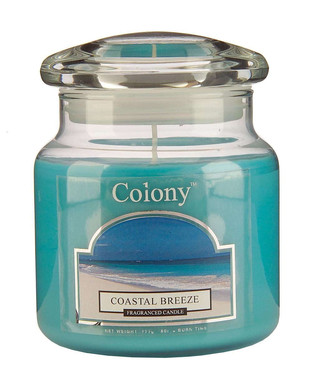 Wax Lyrical Морской бриз ароматизированная свеча в стекле средняя, 90 часов300074_ежевикаСвежий шипрово-цветочный аромат с инжирными оттенками