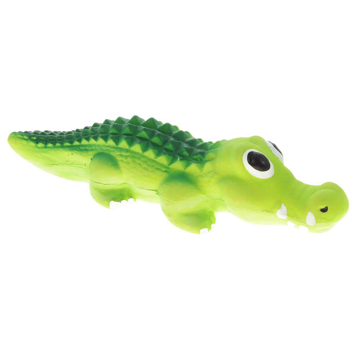 Игрушка для собак V.I.Pet Крокодил, цвет: зеленый0120710Игрушка V.I.Pet Крокодил изготовлена из латекса с использованием только безопасных, не токсичных красителей. Великолепно подходит для игры и массажа десен вашей собаки.Забавный крокодил при надавливании или захвате пастью пищит. Такая игрушка порадует вашего любимца, а вам доставит массу приятных эмоций, ведь наблюдать за игрой всегда интересно и приятно. Оставшись в одиночестве, ваша собака будет увлеченно играть в эту игрушку.