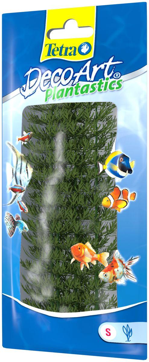 Искусственное растение для аквариума Tetra Амбулия S606890Это растение хорошо подойдет для оформления аквариума.Естественно выглядящее искусственное растение;Для использования в любых аквариумах;Создает отличное место для укрытия (в т.ч. для метания икры);Легко и быстро устанавливается, является абсолютно безопасным;Не требует ухода;Долгое время не теряет форму и окраску. Высота растения: 15 см.