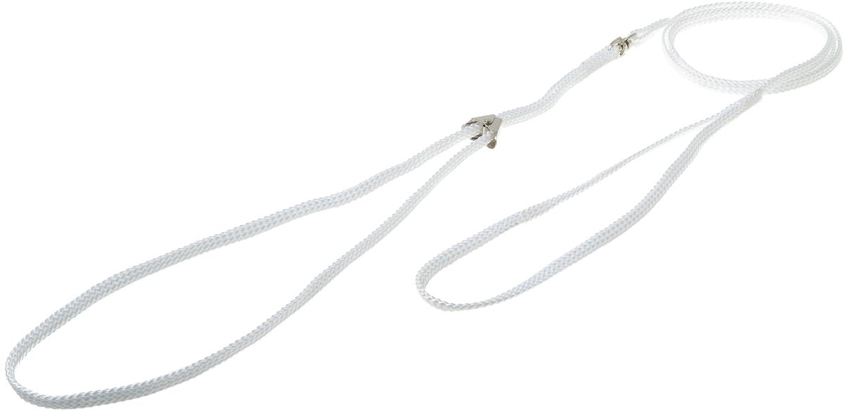 Ринговка V.I.Pet, с прищепкой, цвет: белый. PEQ-050120710Ринговка V.I.Pet - это специальный поводок, состоящий из петли с фиксатором и, собственно, поводка. Выполнена из нейлона, фурнитура - из высококачественной стали. Ринговка является самым распространенным видом амуниции для показа собаки на выставке или занятий рингдрессурой. Ринговку подбирают в тон окраса собаки, если собака пятнистая - то в тон преобладающего окраса или, наоборот, контрастную.