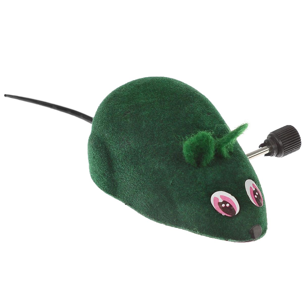 Игрушка для кошек Beeztees Мышь заводная, цвет: зеленый0120710Игрушка для кошек Beeztees Мышь заводная, изготовленная из пластика и текстиля, привлечет внимания вашей кошки. Изделие оснащено колесиками и заводным механизмом. Игрушка не требует батареек просто покрутите механизм до упора и мышка начнет двигаться. Такая игрушка не навредит здоровью вашего питомца и увлечет его на долгое время.