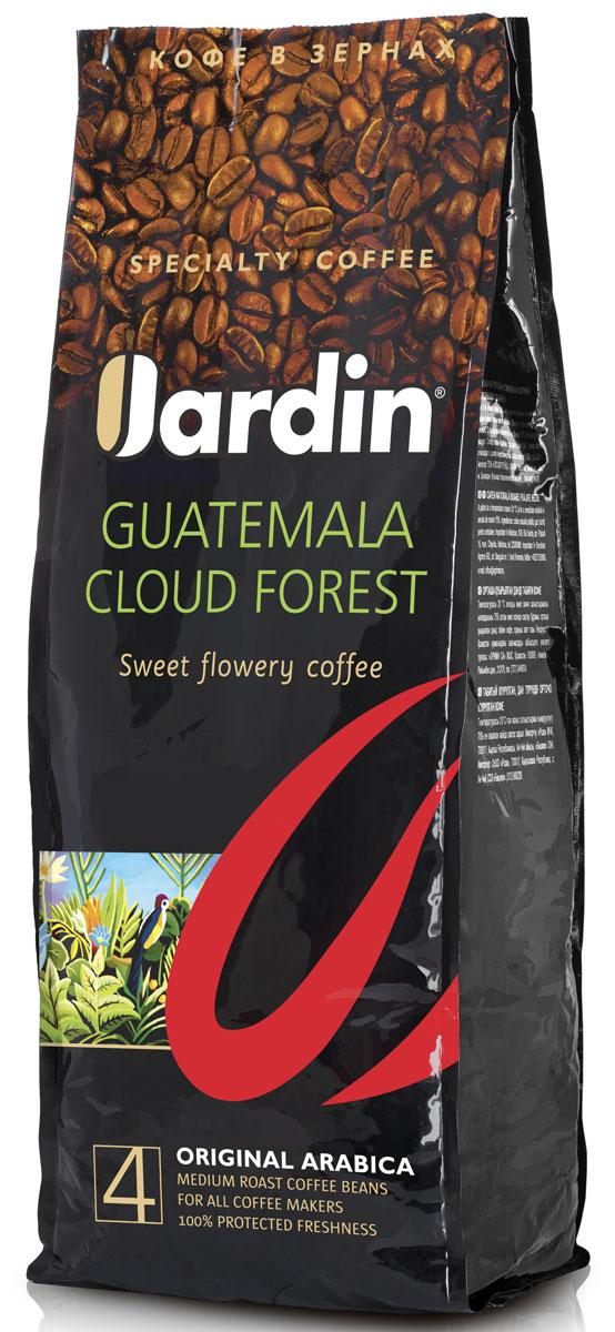 Jardin Guatemala Cloud Forest кофе в зернах, 1 кг10106781Зерновой кофе Jardin Guatemala Cloud Forest отличается своеобразным вкусом - плотным, с тонкой кислинкой и нотами черной смородины, а также долгим послевкусием. Этот сорт кофе выращивают в Гватемале на плодородных почвах вулканического происхождения, во влажном климате субтропических лесов.