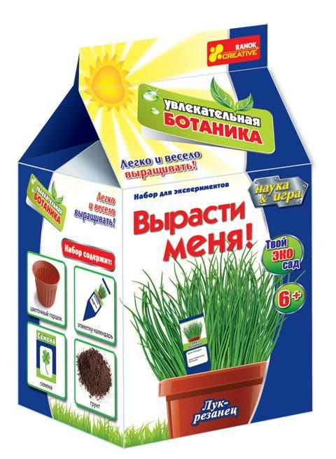 Лук-резанец — совершенно особенный вид лука, ведь его зелень отличается мягким и нежным вкусом. Растение широко используется в декорировании.