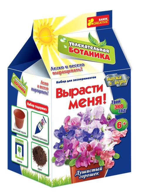 Душистый горошек - вьющееся растение, растущий в высоту на 1-2 метра (если есть подходящая опора).