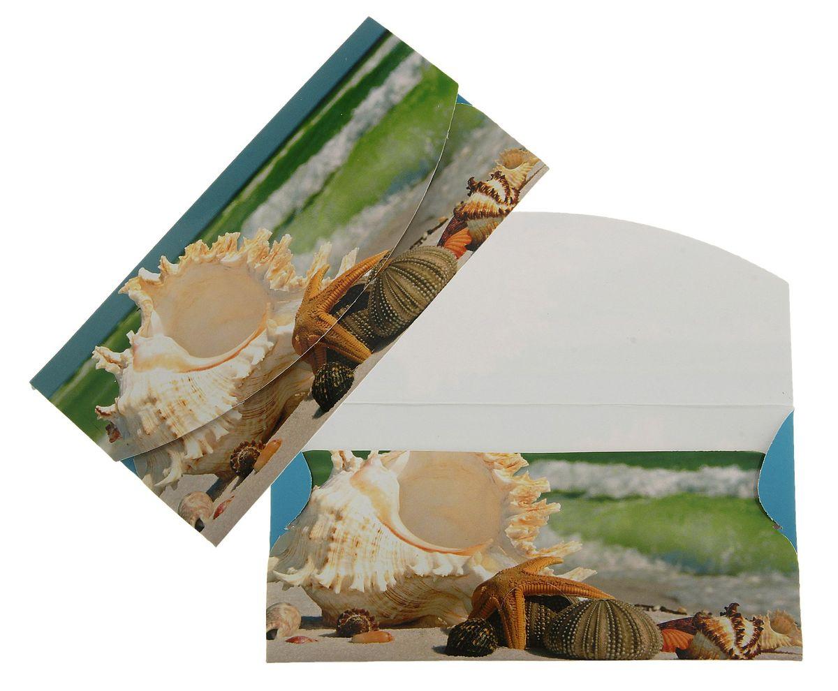 Конверт для денег Ракушка. 789325789325Конверт для денег Ракушка изготовлен из картона и украшен яркой картинкой с изображением ракушки.Это необычная красивая одежка для денежного подарка, а так же отличная возможность сделать его более праздничным и создать прекрасное настроение!