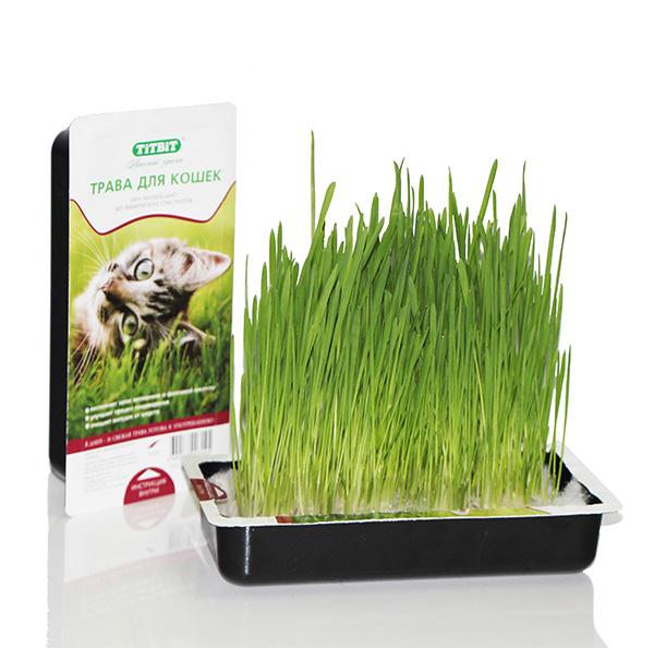 Трава для кошек Titbit, в лотке101246100% натуральный продукт, без использования искусственных субстратов. Технологичный дренажный мешок обеспечивает дренаж, а также способствует созданию тепличного эффекта для более эффективного роста семян. Свежепророщенная трава восполняет запас витаминов и фолиевой кислоты, улучшает процесс пищеварения и очищает желудок животного от шерсти. Удобство использования - после прорастания семян, в лотке не нужно делать дренажные отверстия и подставлять поддон, а в случае опрокидывания лотка синтепоновый мешок предотвращает рассыпание семян. Состав: Овес, дренажный мешок из синтепона.