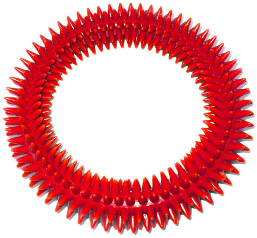 Кольцо массажное с шипами V.I.Pet, цвет: красный, диаметр 16 см0120710Массажное кольцо с шипами V.I.Pet предназначено для собак. Прочная игрушка выполнена из пластика с использованием только безопасных, не токсичных красителей. Отлично подходит для игры с собакой, во время которой будет происходить массаж и укрепление десен вашего питомца. Как и в случае с любой другой игрушкой для животных, присматривайте за собакой во время игры. Диаметр: 16 см.Товар сертифицирован.