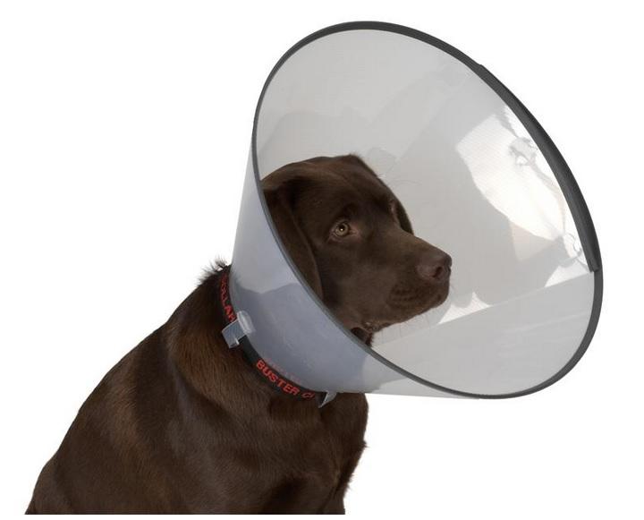 Защитный воротник для животных Kruuse Buster, высота 7,5 см. 2739000120710Защитный воротник Kruuse Buster изготовлен из высококачественного нетоксичного пластика, который позволяет сохранять углы обзора для животного. Изделие, оснащенное защитным резиновым ободком, разработано для ограничения доступа собаки к заживающей ране или послеоперационному шву. Простота в эксплуатации позволяет хозяевам самостоятельно одевать и снимать защитный воротник с собаки. Подходит для собак мелких пород.Обхват шеи: 15-17 см.Высота воротника: 7,5 см.