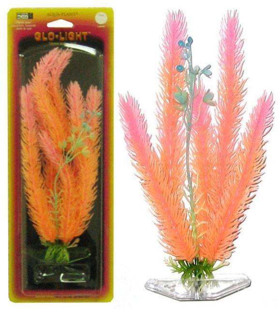 Растение CLUB MOSS 18см оранжево-розовое светящееся. МАЙЯКА.FILTER 003Распространение: Серевная Америка. Использование: эффектный светящийся вариант популярного растения.