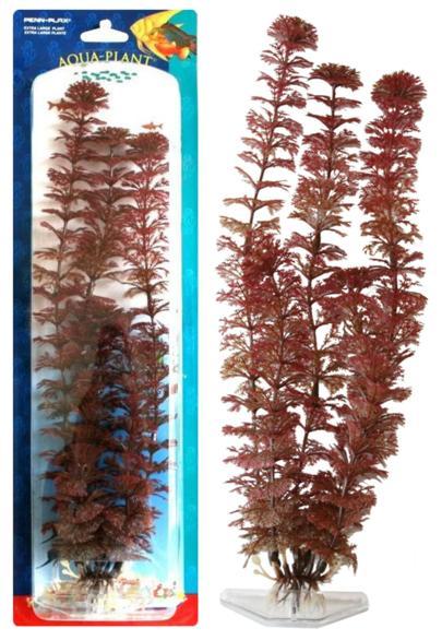 Растение RED AMBULIA 18см красное. АМБУЛИЯ0120710Распространение: Юго-Восточная Азия. Популярное аквариумное растение среднего и заднего плана. Декоративный красно-коричневый вариант растения.