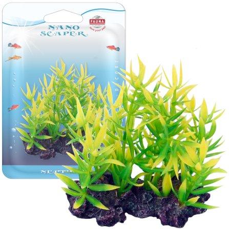 Растение NESAEA 10см с грузом красно-зеленое. НЕЗЕЯART-1130809Распространение: Зап. Африка. Использование: красно-зеленое растение переднего плана.