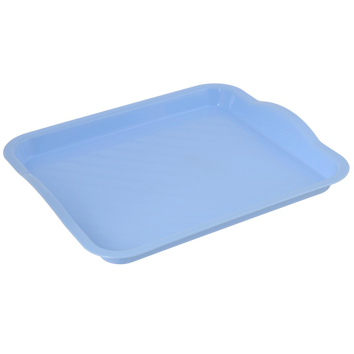 Поднос Idea, цвет: голубой, 29 см х 25 см115510Поднос Idea изготовлен из высококачественного полипропилена. Он станет незаменимым предметом для сервировки стола. Поднос не только дополнит интерьер вашей кухни, но и защитит поверхность стола от грязи и перегрева. Классический поднос Idea придется по вкусу и ценителям классики, и тем, кто предпочитает современный стиль.