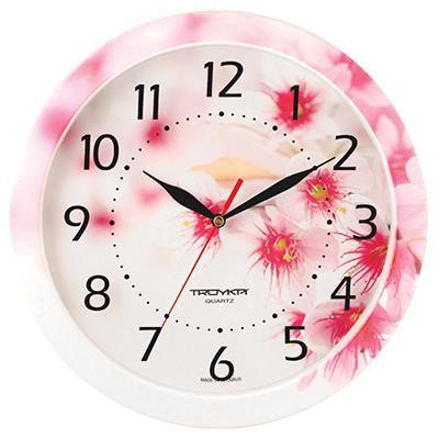 Часы настенные Troyka, цветные. 11000019300074_ежевикаTROYKA 11000019 часы настенные (Цветущий сад, круг, пластик, полноцветная печать на пластике) Материал: пластик; размер: диаметр 290 мм; цвет: цветные