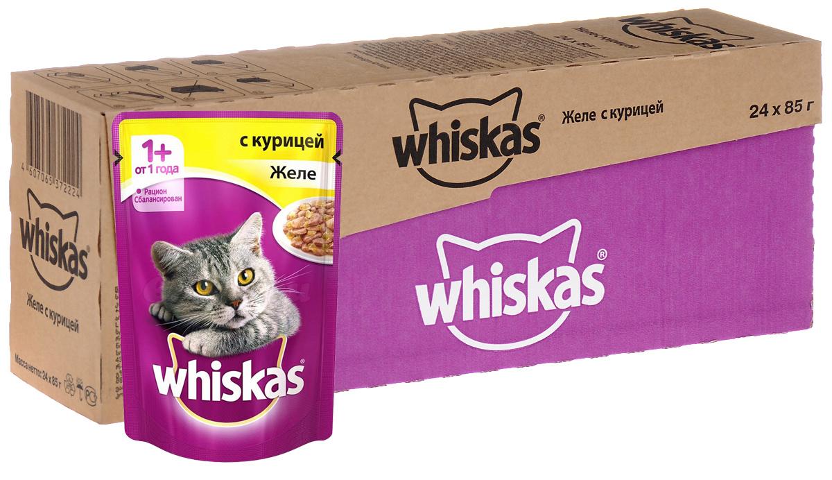 Консервы Whiskas для кошек от 1 года, желе с курицей, 85 г, 24 шт12171996Консервы для кошек от 1 года Whiskas - полнорационный сбалансированный корм, который идеально подойдет вашему любимцу. Аппетитное рагу приготовлено с учетом потребностей взрослых кошек. Специально сбалансированный рацион содержит все питательные вещества, витамины и минералы, необходимые кошке в этом возрасте. Консервы не содержат сои, консервантов, ароматизаторов, искусственных красителей и усилителей вкуса.В рацион домашнего любимца нужно обязательно включать консервированный корм, ведь его главные достоинства - высокая калорийность и питательная ценность. Консервы лучше усваиваются, чем сухие корма. Также важно, чтобы животные, имеющие в рационе консервированный корм, получали больше влаги.Состав: мясо и субпродукты (в том числе курица минимум 4%), таурин, злаки, витамины, минеральные вещества. Пищевая ценность в 100 г: белки - 7,5 г, жиры - 3,5 г, клетчатка - 0,3 г, зола - 2,5 г, витамин А - не менее 150 МЕ, витамин Е - не менее 1,0 мг, влага - 85 г.Энергетическая ценность в 100 г: 60 ккал/251 кДж.Товар сертифицирован.В упаковке 24 пакетика по 85 г.