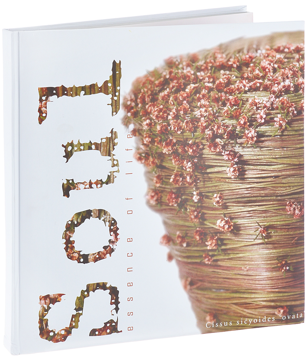 Фотоальбом Pioneer Soul, 10 магнитных листов, 29 см х 32 см12723Фотоальбом Pioneer Soul, изготовленный из картона с клеевым покрытием и пленки ПВХ, сохранит моменты ваших счастливых мгновений на своих страницах! Альбом с магнитными листами удобен тем, что он позволяет размещать фотографии разных размеров. Магнитные страницы обладают следующими преимуществами: - Не нужно прикладывать усилий для закрепления фотографий, - Не нужно заботиться о размерах фотографий, так как вы можете вставить в альбом фотографии разных размеров, - Защита фотографий от постоянных прикосновений зрителей с помощью пленки ПВХ.Нам всегда так приятно вспоминать о самых счастливых моментах жизни, запечатленных на фотографиях. Поэтому фотоальбом является универсальным подарком к любому празднику. Вашим родным, близким и просто знакомым будет приятно помещать фотографии в этот альбом.Количество листов: 10 шт.Размер листа: 29 см х 32 см.
