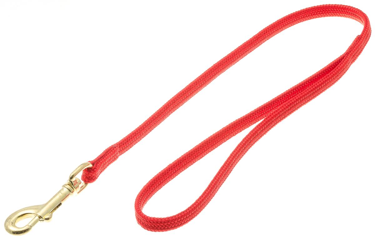 Водилка для собак V.I.Pet, цвет: красный, ширина 7 мм, длина 50 см0120710Профессиональная выставочная водилка V.I.Pet изготовлена из нейлона. Легкая, прочная, удобная. Применяется также для повседневного использования. При помощи карабина идеально комбинируется с выставочными цепочками, ошейниками, полуудавками.