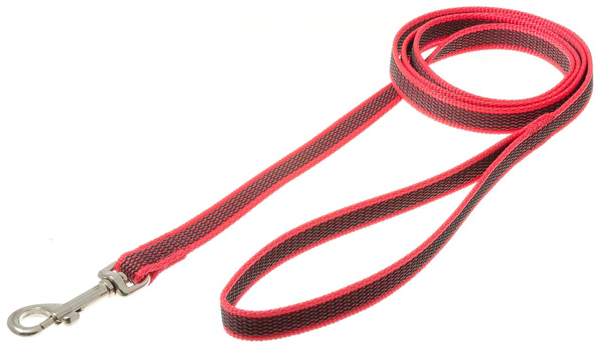 Поводок для собак V.I.Pet, профессиональный, цвет: серый, красный, ширина 15 мм, длина 1,5 м0120710Профессиональный нейлоновый поводок V.I.Pet с латексной нитью предназначен для дрессировки собак, а также для повседневного использования. Подойдет для сильных и активных собак. Не скользит, не обжигает руки. Вращающийся вертлюг карабина предотвращает перекручивание поводка.Ширина поводка: 15 мм.