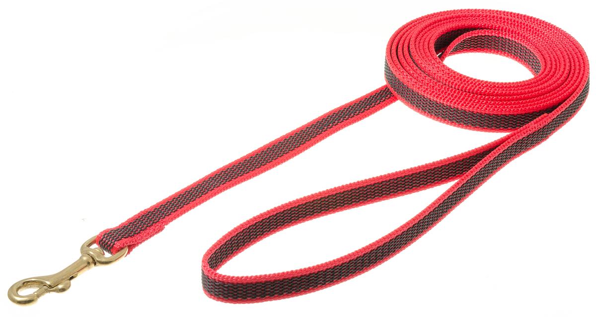 Поводок для собак V.I.Pet, цвет: красный, ширина 15 мм, длина 3 м. 73-258373-2583Поводок профессиональный нейлоновый с латексной нитью, двухсторонний. Предназначен для дрессировки собак, а также для повседневного использования. Подойдет для сильных и активных собак. Не скользит, не обжигает руки. Вращающийся вертлюг карабина предотвращает перекручивание поводка. Бронзовый карабин не замерзает, не раскалывается и не клинит на морозе. Материал: нейлон, латекс, бронзовый карабин.Цвет: красный.Ширина: 15 мм.Длина: 3 м.