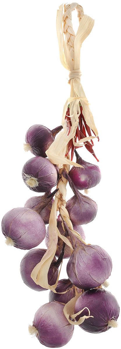 Муляж Лук с перцем в связке, цвет: фиолетовый, бордовый, 60 см54 009312Муляж Лук с перцем в связке изготовлен из полиуретана, окрашен в естественные цвета. Предназначен для украшения интерьера дома.Длина связки: 60 см.
