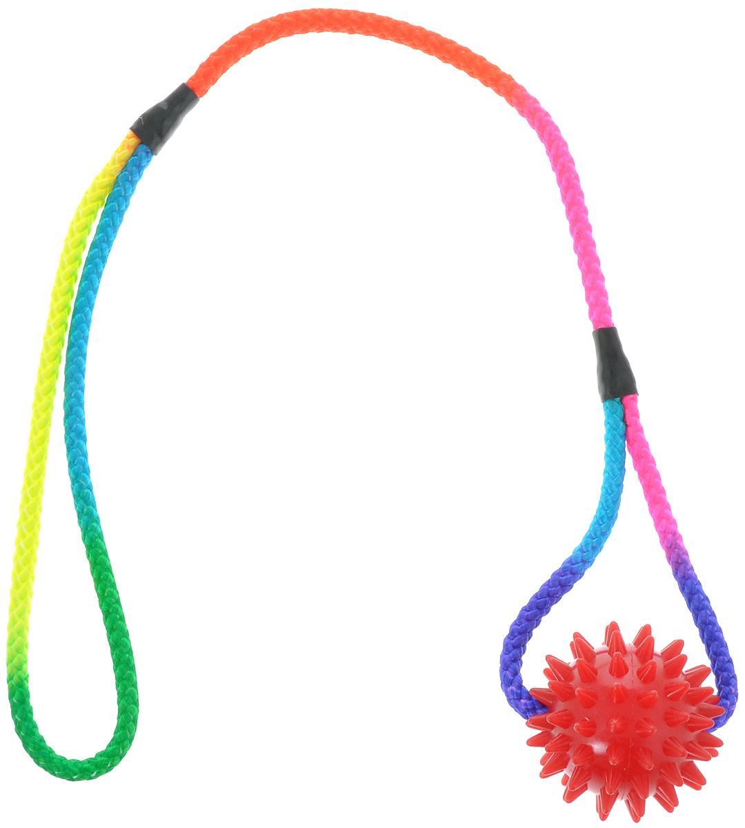 Игрушка для собак V.I.Pet Массажный мяч, на шнуре, цвет: красный, диаметр 5,5 см770550_красныйИгрушка для собак V.I.Pet Массажный мяч, изготовленная из ПВХ, предназначенадля массажа и самомассажа рефлексогенных зон. Она имеет мягкие закругленныемассажные шипы, эффективно массирующие и не травмирующие кожу. Сквозь мяч продет шнур.Игрушка не позволит скучать вашему питомцу ни дома, ни на улице.Диаметр: 5,5 см.Длина шнура: 50 см.