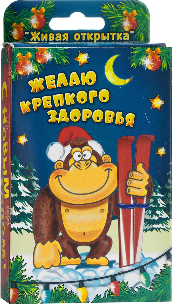 Открытка-прорастайка Sima-land Желаю крепкого здоровья010120011/3В новогодней суете не забудьте, что подарки должны быть особенными и душевными. Растущая трава в открытке Sima-land Желаю крепкого здоровья - это необычный и яркий сувенир, наделенный настоящим духом Нового года.Зелень можно выращивать где угодно, вам не обязательно держать ее на подоконнике или создавать тепличные условия, достаточно теплой обстановки и электрического источника освещения. Посадите семена, поливайте их, и через 3-4 дня из грунта начнут пробиваться маленькие росточки свежей травы.В набор входит:- емкость для посадки (10 см х 8 см х 2 см); - декоративные фигурки: 3 шт.;- грунт для выращивания;- семена;- инструкция по посадке и уходу на русском языке.Средний размер декоративных фигурок: 2,5 см х 5,5 см.