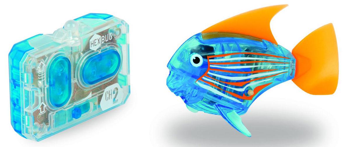 Hexbug Aquabot 3.0 RC - это обновленная версия роборыбки, управляемая при помощи пульта ДУ. Кроме того, управляемая рыбка-ангел получила яркий и привлекательный окрас плавничков и хвостика, стильный декор и умные, словно настоящие, глазки. Наделив рыбку пультом ДУ, разработчики не лишили ее самостоятельности. Если вы не хотите управлять рыбкой, то просто пустите робо-рыбку в аквариум и она будет плавать сама. Не утратила прирученная рыбка и первоначальных свойств: как и раньше аквабот просыпается от стука по стенкам аквариума и светится в темноте.