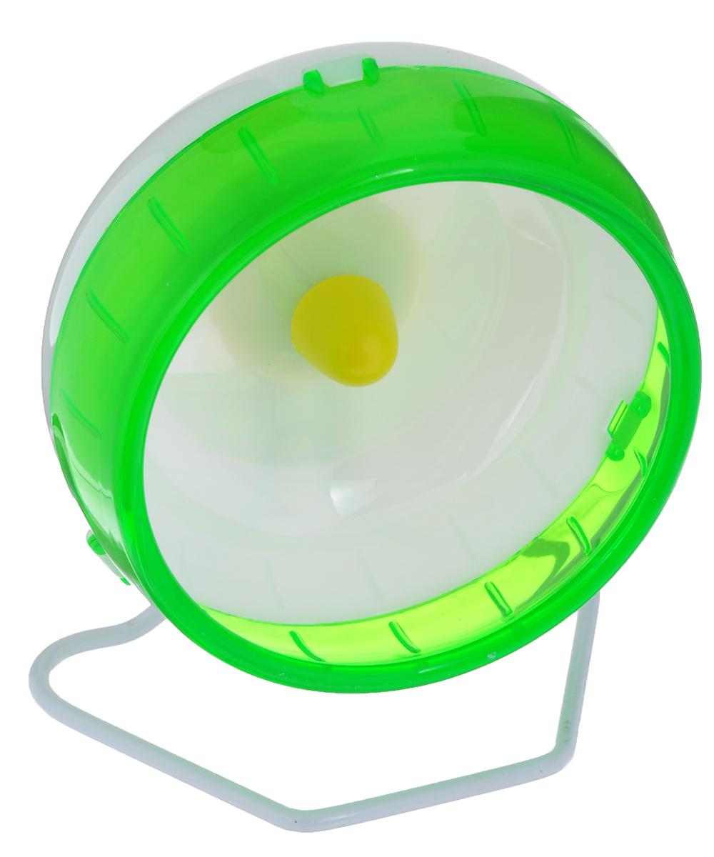 Колесо для грызунов I.P.T.S., цвет: белый, зеленый, диаметр 12 см0120710Колесо для грызунов I.P.T.S., выполненное из прочного пластик и металла, очень удобное и бесшумное, с высоким уровнем безопасности. Поместив его в клетку, вы обеспечите своему питомцу необходимую физическую активность. Сплошная внутренняя поверхность без щелей убережет хомячка от возможных травм. Можно установить на подставку или прикрепить к решетке. Предназначено для карликовых хомяков и мышей. Диаметр колеса: 12 см.