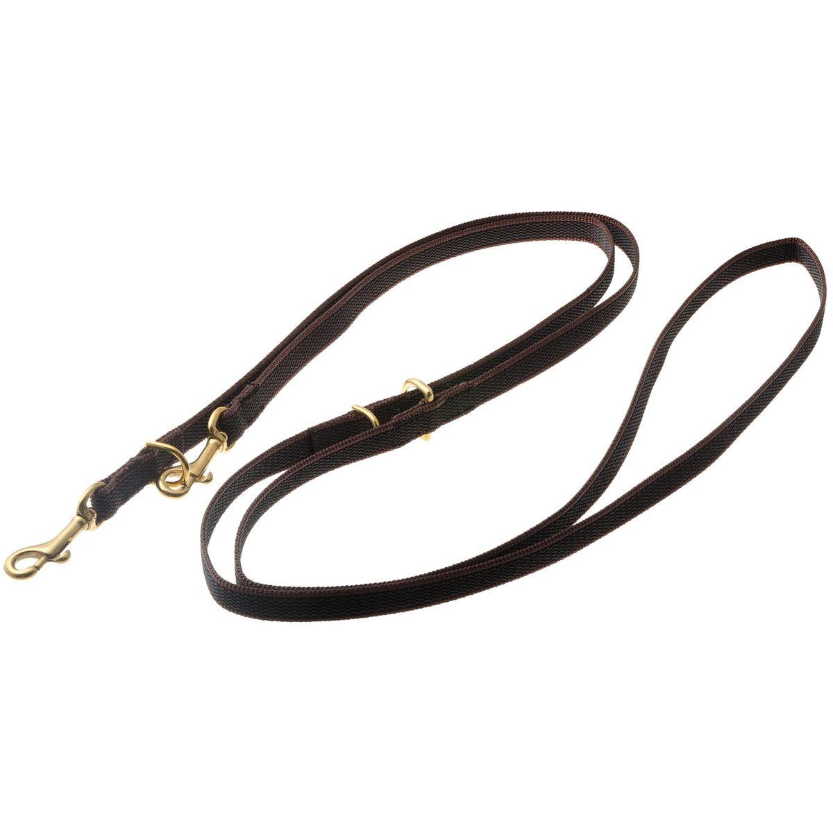 Поводок для собак V.I.Pet, цвет: золотистый, коричневый, ширина 15 мм, длина 2,6 м0120710Поводок V.I.Pet предназначен для дрессировки собак, а также для повседневного использования, прогулок и вождения двух собак одновременно. Подойдет для самых сильных и активных собак. Не скользит в руке.