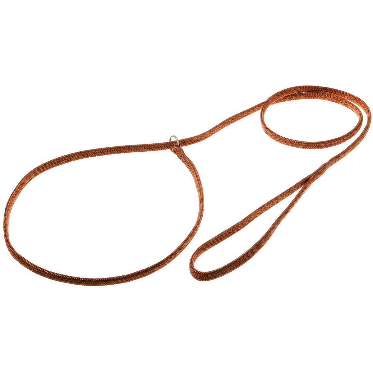 Поводок для собак V.I.Pet, цвет: светло-коричневый, ширина 7 мм, длина 1,5 мDM-160131-1Поводок-удавка V.I.Pet состоит из петли с фиксатором и, собственно, поводка. Является самым распространенным видом выставочной амуниции. Подходит также для повседневного использования.