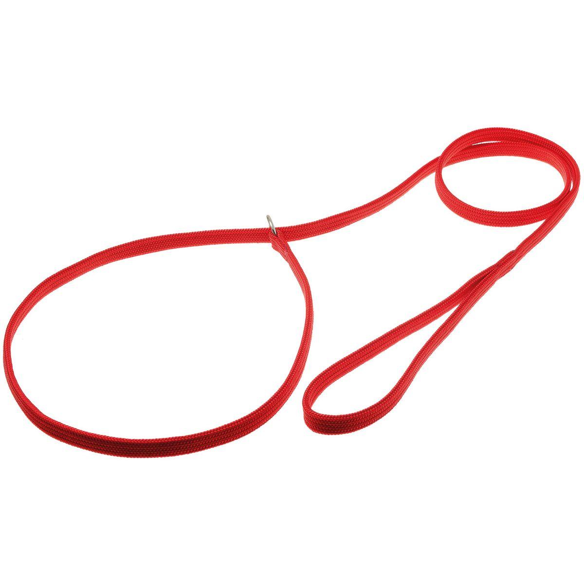 Поводок для собак V.I.Pet, цвет: красный, ширина 10 мм, длина 1,5 м. 74-23880120710Поводок-удавка V.I.Pet состоит из петли с фиксатором и, собственно, поводка. Является самым распространенным видом выставочной амуниции. Подходит также для повседневного использования.