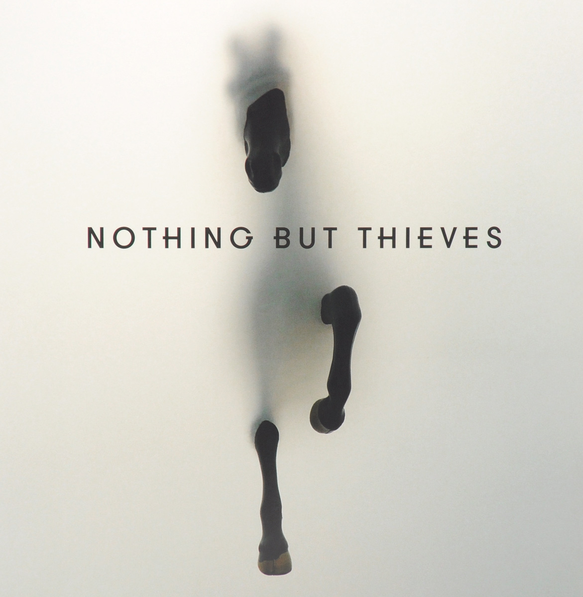 Nothing But Thieves Nothing But Thieves. Nothing But Thieves (LP) phil collin but seriously 2 lp
