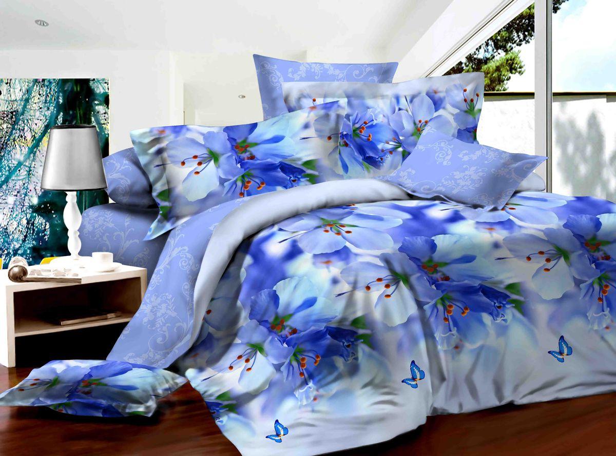 Комплект белья Диана La Vanille, дуэт, наволочки 70х70, цвет: белый, синий, голубой. С-590-143-240-70CLP446Комплект постельного белья Диана La Vanille состоит из двух пододеяльников, простыни и двух наволочек. Постельное белье оформлено оригинальным рисунком и имеет изысканный внешний вид.Белье изготовлено бязи (100% хлопка).Бязь - это ткань из экологически чистого и натурального 100% хлопка. Неоспоримым плюсом белья из такой ткани является мягкостьи легкость, она прекрасно пропускает воздух, приятна на ощупь, не образует катышков на поверхности и за ней легко ухаживать. При соблюдении рекомендаций по уходу, это белье выдерживает много стирок, не линяет и не теряет свою первоначальную прочность. Уникальная ткань обеспечивает легкую глажку.Приобретая комплект постельного белья Диана La Vanille, вы можете быть уверенны в том, что покупка доставит вам ивашим близким удовольствие и подарит максимальный комфорт.