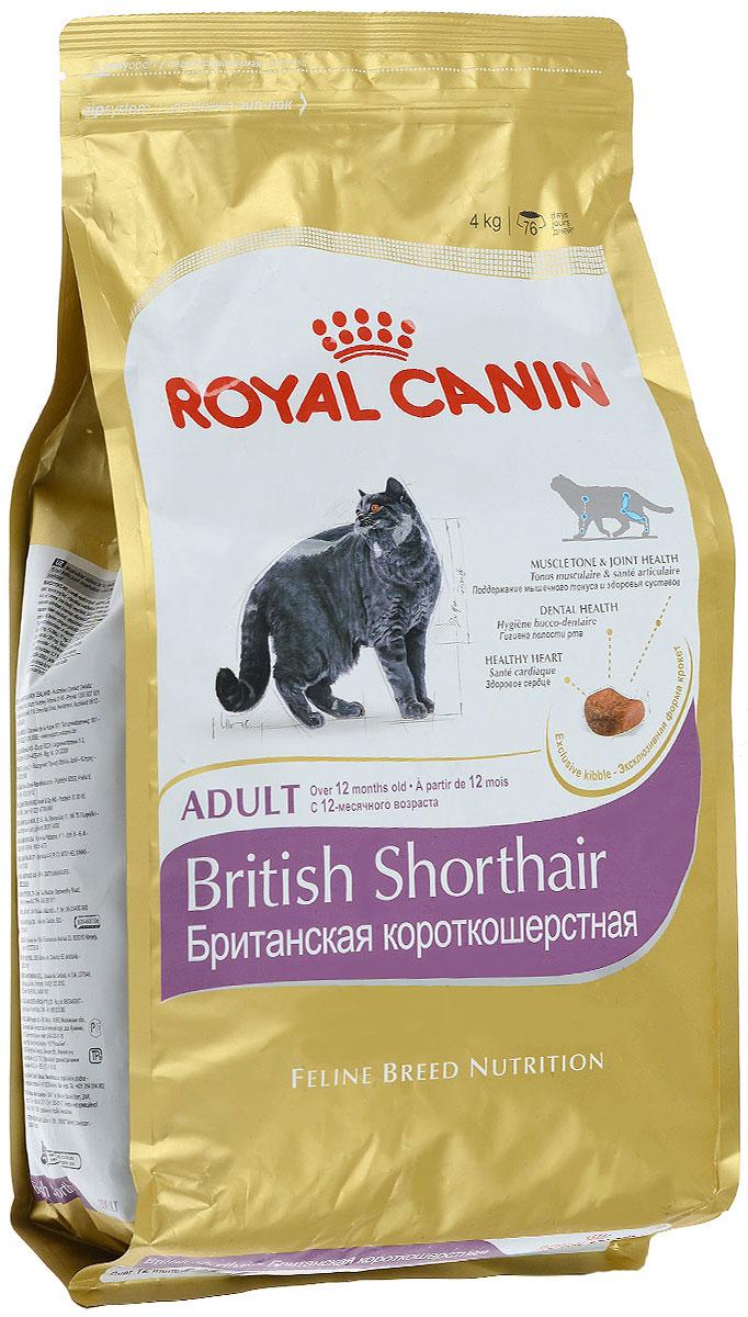Корм сухой Royal Canin British Shorthair Adult, для британских короткошерстных кошек старше 12 месяцев, 4 кг24Сухой корм Royal Canin British Shorthair Adult - полнорационный корм для британских короткошерстных кошек старше 12 месяцев. Британская короткошерстная кошка родом из Великобритании, что явствует из названия породы.Медленное разгрызание и поглощение корма: забота о гигиене ротовой полости. Чтобы кошка по возможности не проглатывала корм, не разгрызая, ей необходимы крокеты особой формы и размера — тогда их поедание будет более физиологичным. Это решает и проблему чистки зубов: таким образом поддерживается гигиена ротовой полости.Поддержание оптимальной формы. Мощные и коренастые, британские короткошерстные кошки испытывают повышенную нагрузку на суставы в сравнении с кошками меньшего веса.Крупное сердце — риск для здоровья. Эта порода имеет предрасположенность к сердечным заболеваниям. Соблюдение диетических рекомендаций — залог здоровья сердца! Мышечный тонус и здоровье суставов.У британской короткошерстной кошки мощное плотное телосложение, вследствие чего повышается нагрузка на суставы. Продукт BRITISH SHORTHAIR помогает поддерживать здоровье костей и суставов, а также оптимальную мышечную массу.Здоровье зубов.Уникальная форма и большие размеры крокет побуждают британских короткошерстных кошек тщательно разгрызать корм, за счет чего поддерживается гигиена ротовой полости. Здоровье сердца.Продукт обогащен таурином и жирными кислотами EPA и DHA.Специально для челюстей британских короткошерстных кошек.AMETHYST 12 — крокета, специально предназначенная для массивных челюстей британских короткошерстных кошек. Форма крокеты позволяет им легче захватывать и тщательно разгрызать корм. Состав: дегидратированное мясо птицы, изолят растительных белков, рис, кукуруза, животные жиры, кукурузная клейковина, растительная клетчатка, гидролизат белков животного происхождения, жом цикория, минеральные вещества, соевое масло, рыбий жир, фруктоолигосахариды, гидролизат дрожже