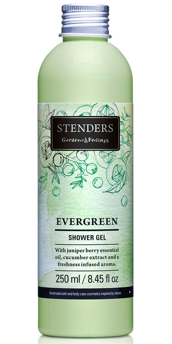 Stenders Гель для душа Evergreen (Эвергрин), 250 млFS-00897Испытайте восстанавливающую силу лесной свежести, наслаждаясь душем с нашим ароматным гелем для душа. Гель, насыщенный бодрящим можжевеловым эфирным маслом и огуречным экстрактом, нежно очистит кожу при помощи роскошной воздушной пены. Почувствуйте свежесть, подобную легкому дуновению ветерка, когда вашу кожу окутывает вдохновляющий аромат с нотками фруктов, цветов и леса. Летнюю свежесть и подлинную чистоту таит в себе экстракт зеленых огурцов. Он действует освежающе и успокаивающе. Кроме того, способен уменьшить припухлость кожи, придавая вам свежий вид.
