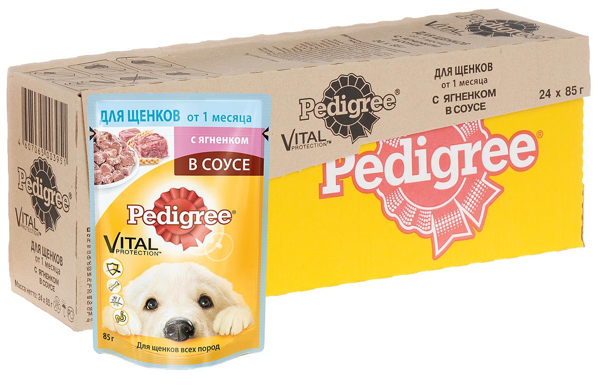 Консервы для щенков Pedigree, с ягненком в соусе, 85 г, 24 шт0120710Консервы для щенков Pedigree - это не просто восхитительно вкусные мясные кусочки, но и полезный, оптимально сбалансированный рацион для щенков от 1 месяца. Он разработан с учетом потребностей собаки в период наиболее интенсивного роста и дает вашему щенку необходимые жизненные силы. Витамин Е и цинк поддерживают иммунную систему. Линолевая кислота и цинк необходимы для здоровья кожи и шерсти. Высокоусвояемые ингредиенты и клетчатка нужны для оптимального пищеварения. Не содержит ароматизаторов, сои и консервантов, усилителей вкуса, искусственных красителей. Состав: мясо и субпродукты (в том числе ягненок минимум 4%), злаки, растительное масло, минеральные вещества, жом свекольный, витамины. Пищевая ценность (100 г): белки - 8 г; жиры - 5,5 г; зола - 2 г; клетчатка - 0,3 г; влага - 81 г; кальций - не менее 0,3 г; цинк - не менее 3 мг; витамин А - не менее 120 МЕ; витамин Е - не менее 1 мг. Энергетическая ценность (100 г): 90 ккал/377 кДж. Вес: 85 г х 24 шт.Товар сертифицирован.