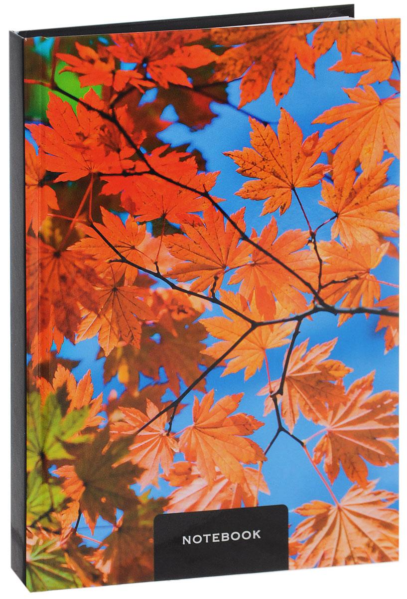 Listoff Записная книжка Листья клена 130 листов в клетку1111-103Записная книжка Listoff Листья клена - незаменимый атрибут современного человека, необходимый для рабочих и повседневных записей в офисе и дома. Записная книжка содержит 130 листов формата А5 в клетку без полей. Обложка, выполненная из ламинированного картона, украшена изображением ярких кленовых листьев. Внутренний блок изготовлен из высококачественной плотной бумаги, что гарантирует чистоту записей и отсутствие клякс. Книга для записей Listoff Листья клена станет достойным аксессуаром среди ваших канцелярских принадлежностей. Она подойдет как для деловых людей, так и для любителей записывать свои мысли, рисовать скетчи, делать наброски.