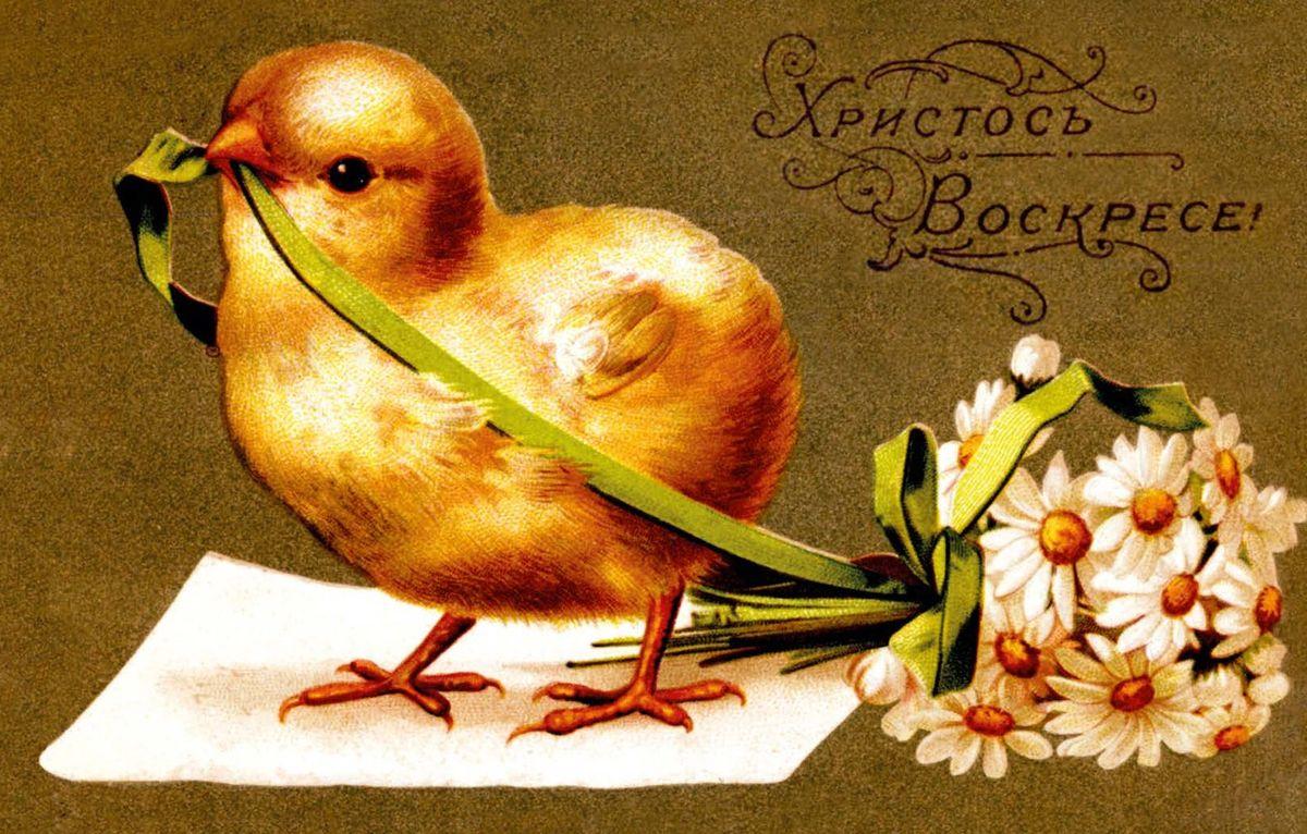 Поздравительная открытка в винтажном стиле Пасха. ОТКР №117LSL-6101-01Оригинальная поздравительная открытка Пасха выполнена из плотного матового картона. На лицевой стороне расположено красочное изображение очаровательного цыпленка с букетом цветов. Обратная сторона открытки имеет место для марки и свободное пространство, на котором вы сможете написать собственное послание. Необычная и яркая открытка в винтажном стиле поможет вам выразить чувства и передать теплые поздравления.Такая открытка станет великолепным дополнением к подарку или оригинальным почтовым посланием, которое, несомненно, удивит получателя своим дизайном и подарит приятные воспоминания.