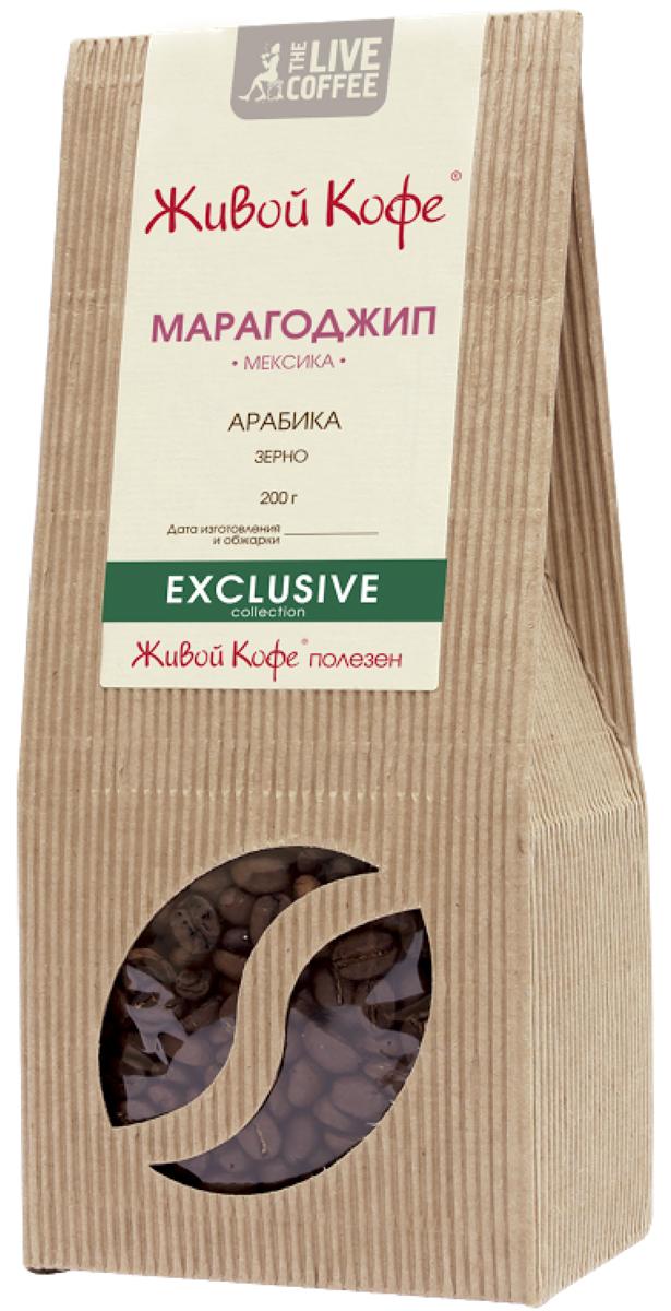 Живой кофе Марагоджип кофе в зернах, 200 гУПП00004241Живой кофе Марагоджип - это кофе с огромными маслянистыми зернами, которые превосходят размерами известные сорта арабики в 3.5 раза. В этом сорте сплелись традиции и новаторство, ручной труд и высокие технологии. Один из самых популярных сортов кофе в мире.