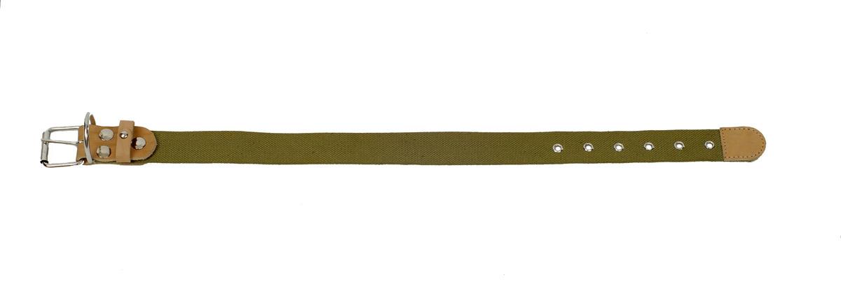 Ошейник Аркон, брезентовый, ширина 35 мм, длина 46-60 см. о35б0120710Ошейник Аркон полностью отвечает требованиям современных мировых кинологических стандартов. Клеевой слой, сверхпрочные нити, крепкие металлические элементы делают ошейники от компании Аркон еще более надежными и долговечными.