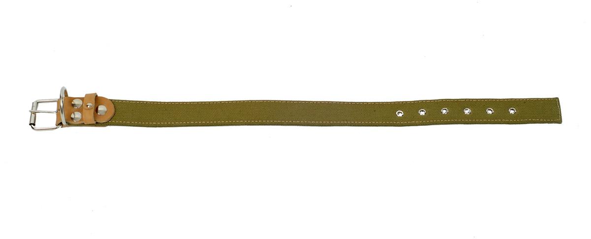 Ошейник Аркон, двойной брезент, ширина 35 мм, длинна 46-60 см. о35дб0120710Ошейник Аркон полностью отвечает требованиям современных мировых кинологических стандартов. Ошейник выполнен из лучшей шорно-седельной кожи, устойчивой к влажности и перепадам температур. Клеевой слой, сверхпрочные нити, крепкие металлические элементы делают ошейники от компании Аркон еще более надежными и долговечными.