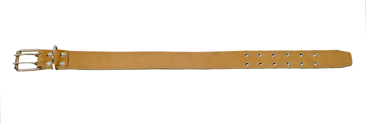 Ошейник Аркон, 45 мм, брезент+кожа длинный. о45бк/до35ункОшейники компании «Аркон» полностью отвечают требованиям современных мировых кинологических стандартов. Все ошейники выполнены из лучшей шорно-седельной кожи, устойчивой к влажности и перепадам температур. Клеевой слой, сверхпрочные нити, крепкие металлические элементы делают ошейники от компании «Аркон» еще более надежными и долговечными