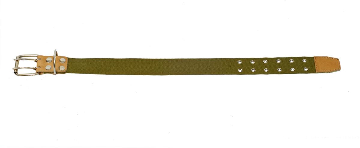 Ошейник Аркон, брезентовый средний, ширина 45 мм, длина 54-68 см. о45бр/с0120710Ошейник Аркон полностью отвечает требованиям современных мировых кинологических стандартов. Ошейник выполнен из лучшей шорно-седельной кожи, устойчивой к влажности и перепадам температур. Клеевой слой, сверхпрочные нити, крепкие металлические элементы делают ошейники от компании Аркон еще более надежными и долговечными.