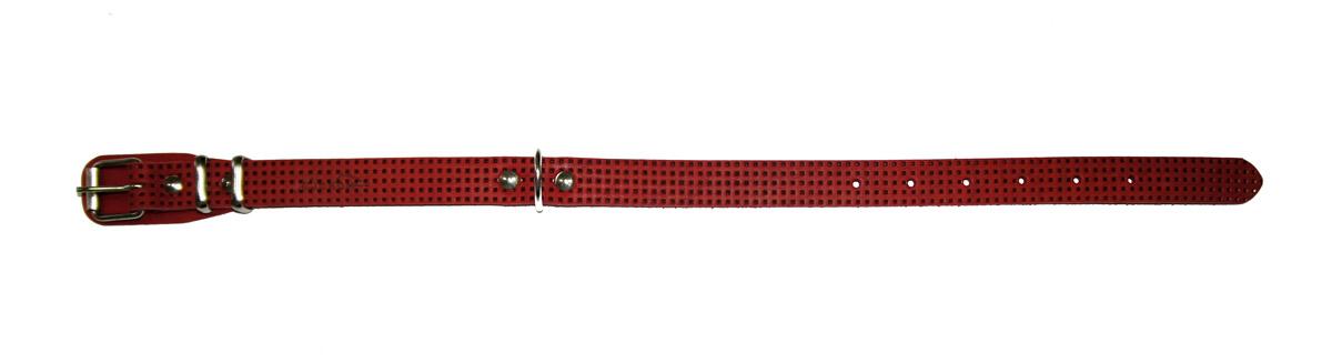 Ошейник Аркон, с тиснением, цвет: красный, ширина 20 мм, длина 32-44 см. о20фкр0120710Ошейник Аркон полностью отвечает требованиям современных мировых кинологических стандартов. Ошейник выполнен из лучшей шорно-седельной кожи, устойчивой к влажности и перепадам температур. Клеевой слой, сверхпрочные нити, крепкие металлические элементы делают ошейники от компании Аркон еще более надежными и долговечными